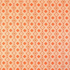 Apricot Decorator Fabric by Silver State
