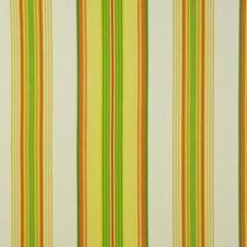 Pina Colada Decorator Fabric by Maxwell