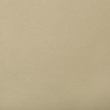 Sandstone Solids Decorator Fabric by Kravet