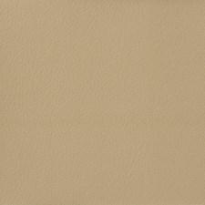 Ivory/Beige Solids Decorator Fabric by Kravet
