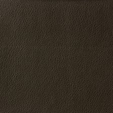 Brown/Espresso Solids Decorator Fabric by Kravet