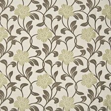 Lichen Decorator Fabric by Kasmir