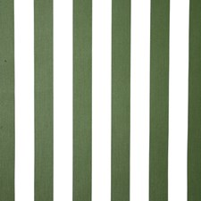 Grass Stripe Decorator Fabric by Pindler