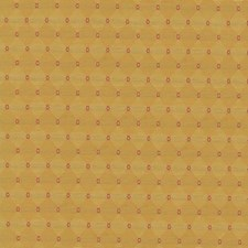 Golden Decorator Fabric by Kasmir