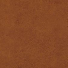 Amber Solids Decorator Fabric by Baker Lifestyle