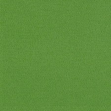 Pesto Decorator Fabric by RM Coco