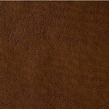 Bronco Animal Skins Decorator Fabric by Kravet