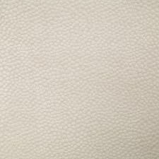 Shell Decorator Fabric by Pindler