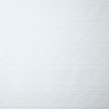 Snow Ethnic Decorator Fabric by Pindler