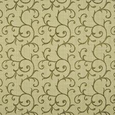 Peridot Decorator Fabric by Kasmir