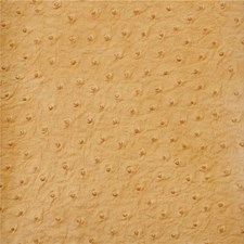 Orange/Brown Animal Skins Decorator Fabric by Kravet