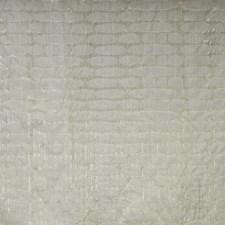Machine Decorator Fabric by Maxwell