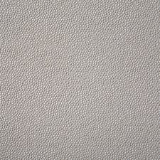 Quartz Decorator Fabric by Pindler
