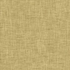 Plantain Decorator Fabric by Kasmir