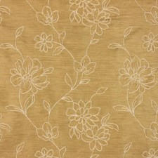 Pirate's Gold Decorator Fabric by RM Coco