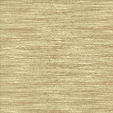 Beige Decorator Fabric by Kasmir