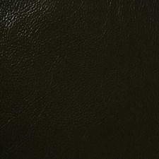 Espresso Decorator Fabric by Pindler