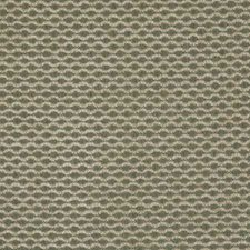 Green Solid Decorator Fabric by Pindler