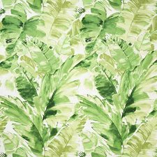 Moss Contemporary Decorator Fabric by Pindler