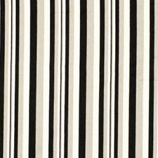 Black Tie Decorator Fabric by Robert Allen