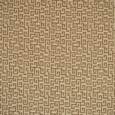 Caramel Decorator Fabric by Silver State