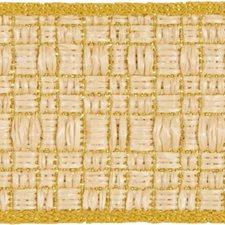 Braids Yellow/Beige Trim by Groundworks