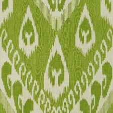 Fern Ikat Decorator Fabric by Kravet
