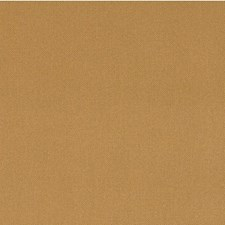 Penny Solid Decorator Fabric by Kravet