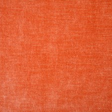 Grapefruit Solid Decorator Fabric by Pindler