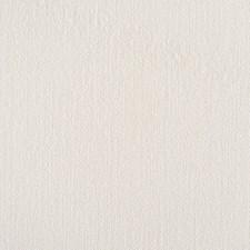 Whisper Gray Decorator Fabric by Scalamandre