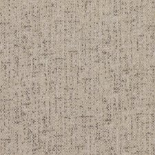 White Pepper Decorator Fabric by RM Coco