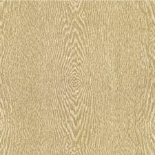 Birch Modern Decorator Fabric by Kravet