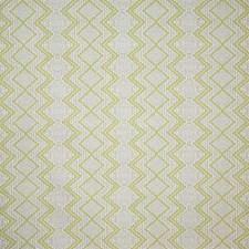 Citrus Damask Decorator Fabric by Pindler