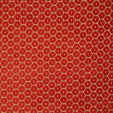 Poppy Decorator Fabric by Pindler