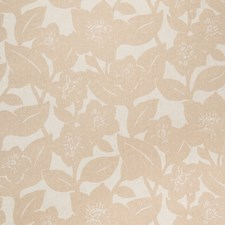 Bisque On Natural Floral Wallcovering by Stroheim Wallpaper