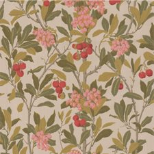 Pink/Linen Wallcovering by Cole & Son Wallpaper