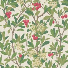 Scarlet/Ivory Wallcovering by Cole & Son Wallpaper