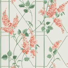 Coral/Sage/Parch Print Wallcovering by Cole & Son Wallpaper