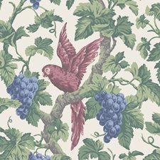 Rose/Par Botanical Wallcovering by Cole & Son Wallpaper