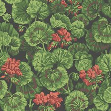 Rouge/Leaf Greens On Black Botanical Wallcovering by Cole & Son Wallpaper