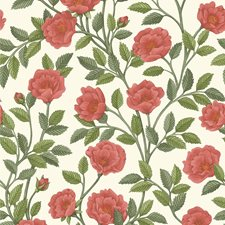 R/Sgrn/Pmnt Botanical Wallcovering by Cole & Son Wallpaper