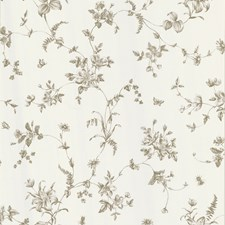 Taupe Trail Wallcovering by Brewster
