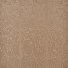 Fawn Wallcovering by Schumacher