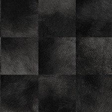Black Transitional Wallcovering by JF Wallpapers