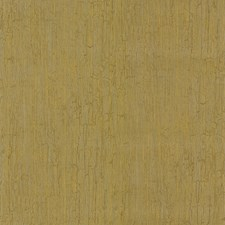 Gold Wallcovering by Cole & Son Wallpaper