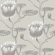 Taupe/White Wallcovering by Cole & Son Wallpaper