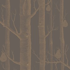 Bronze/Black Botanical Wallcovering by Cole & Son Wallpaper
