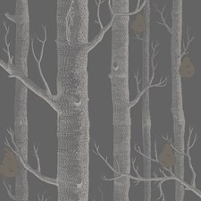 Gilver/Black Wallcovering by Cole & Son Wallpaper