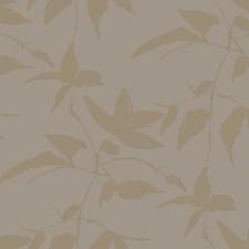 AF6512 Persimmon Leaf by York