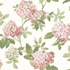 White/Off Whites Flowers Wallcovering by York